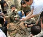 學童觀察校園動植物生態